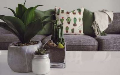 Spring Clean Your Furniture With These 6 Simple Steps