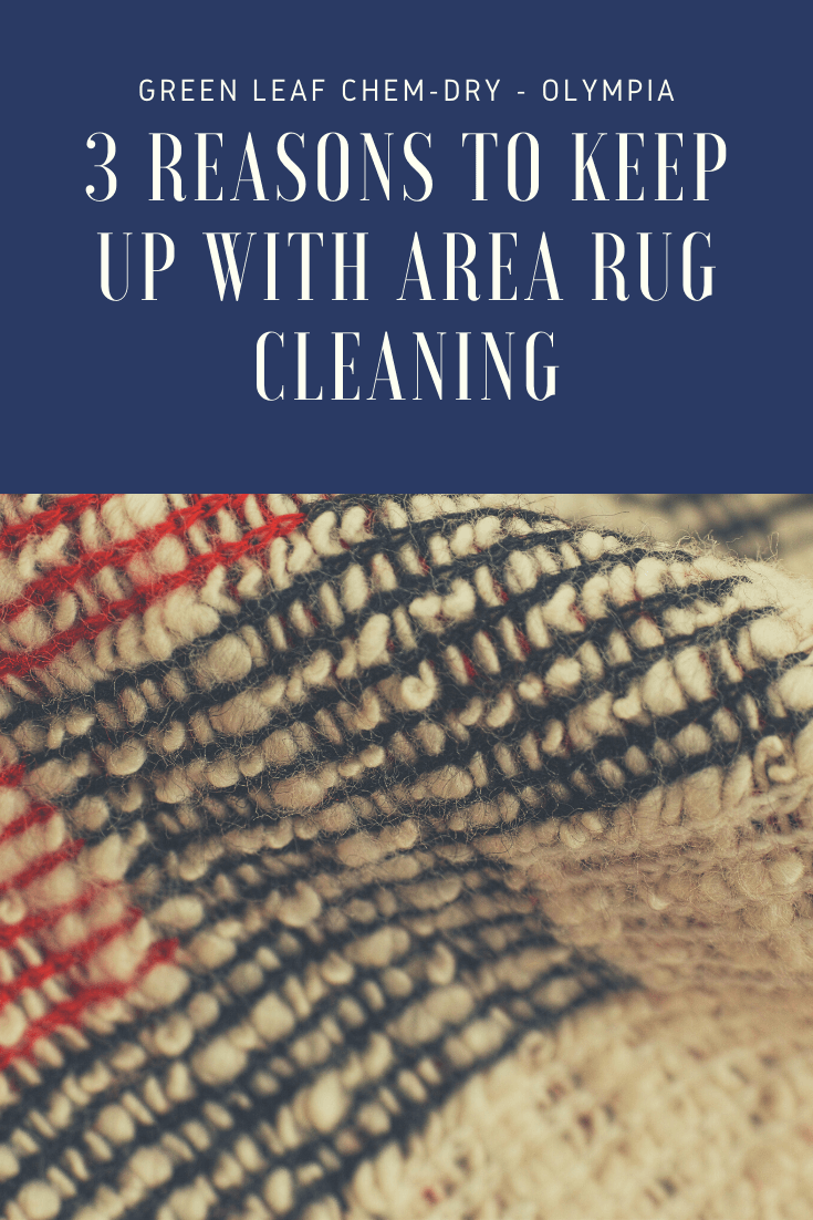 area rug cleaning olympia