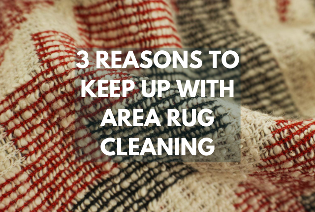 A feature image with an area rug and header saying three reasons why you should maintain area rugs.
