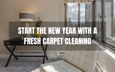 New Year, Fresh Start With Chem-Dry Carpet Cleaning