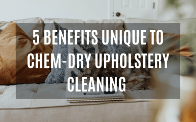 5 Benefits Unique To Chem-Dry Furniture Cleaning